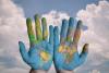 A importância de obter relatórios de empresas internacionais para exportar